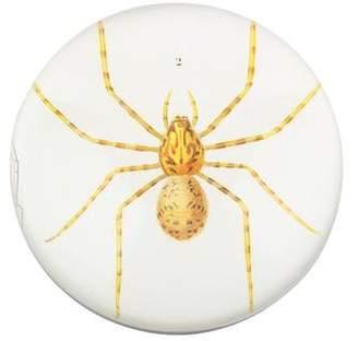 John Derian Découpage Spider Dome Paperweight