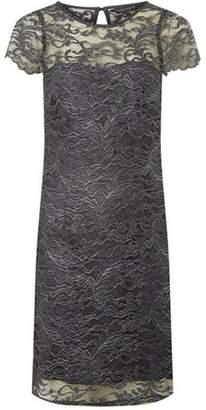 Dorothy Perkins Womens Grey Metallic Lace Short Sleeve Shift Dress