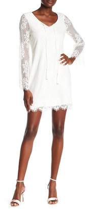 TASH + SOPHIE Eyelash Lace Long Sleeve Shift Dress