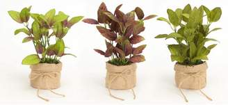 """Melrose Pack of 6 Artificial Potted Mixed Basil with Burlap Bases 8.5"""" - 3 Styles"""