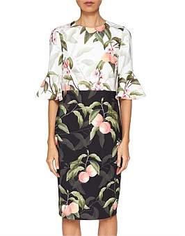 Ted Baker Areea Peach Blossom Ruffle Dress