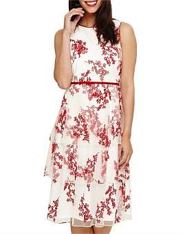 Phase Eight Francine Ditsy Floral Dress
