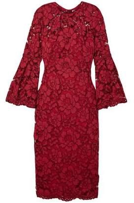 Lela Rose Grosgrain-trimmed Corded Lace Midi Dress