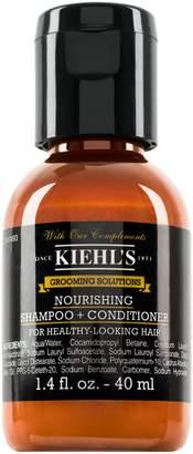 Kiehl's Healthy Hair Scalp Shampoo & Conditioner