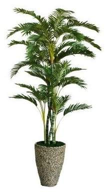 Bayou Breeze Tall Floor Palm Tree in Planter