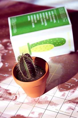 Urban Outfitters Cactus Kit