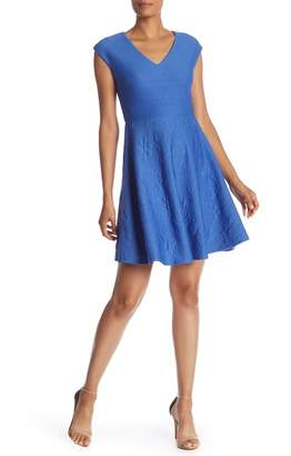 Taylor Fit & Flare Cap Sleeve Dress