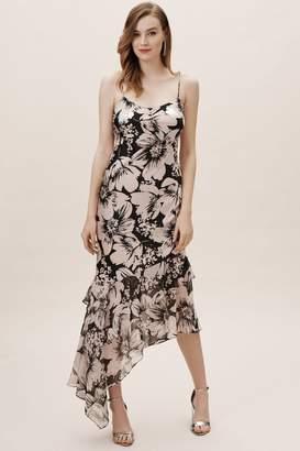 Adrianna Papell Adams Dress