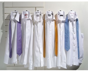 David Donahue Men's Regular Fit Oxford Dress Shirt
