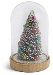 Marks and Spencer Bristle Tree in Cloche