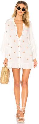 Salinas Shirt Dress
