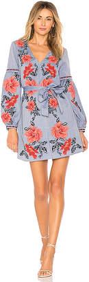 Parker Anana Dress