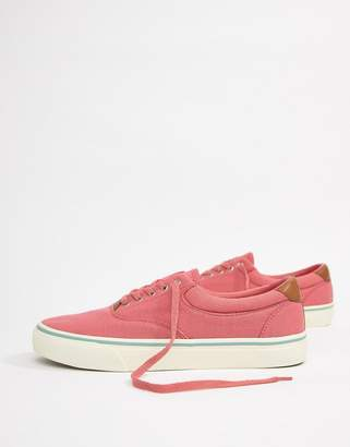 Polo Ralph Lauren Thorton 2 Pique Trainers Leather Trims In Pink