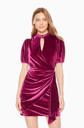 Parker Artie Velvet Dress