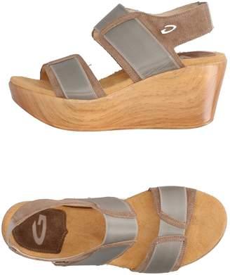 Alberto Guardiani Sandals - Item 11254963CN