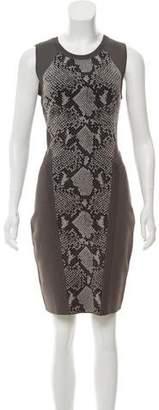 Diane von Furstenberg Franca Bodycon Dress