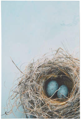 Wayfair Blue Nest Photographic Print on Canvas in Blue/Gray