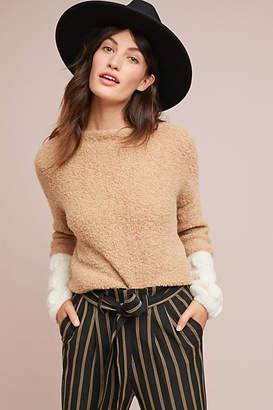 Stella Pardo Lady Sweater