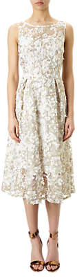 Adrianna Papell 3D Lace Fit And Flare Midi Dress, Ivory/Gold