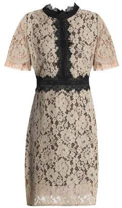 Raoul Corded Lace Mini Dress