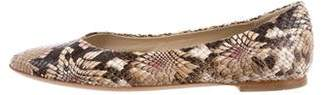 AGL Embossed Pointed-Toe Flats