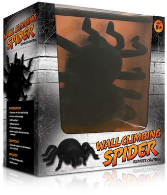 The Source Wall Climbing Spider