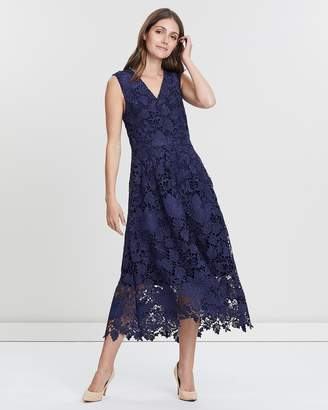 David Lawrence Sleeveless Lace Fit And Flare Dress