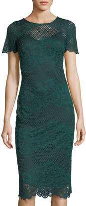 Donna Ricco Lace and Mesh Short-Sleeve Dress
