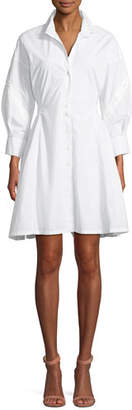 Joie Darcila Cotton Button-Up Shirtdress