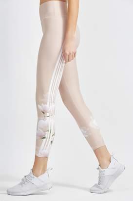 Body Language Sculpt Legging