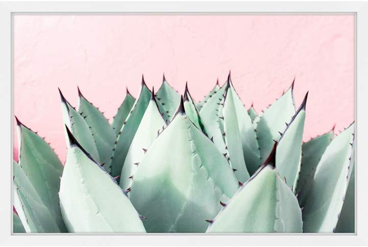 Marmont Hill Sweet Succulents (Shadow Box)