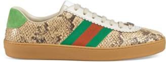 Gucci G74 python sneaker with Web