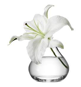 LSA International Flower Sprig Vase