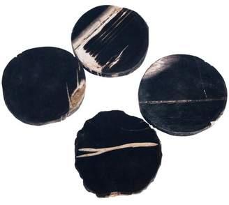 4 Piece Fossilized Wood Coasters Set