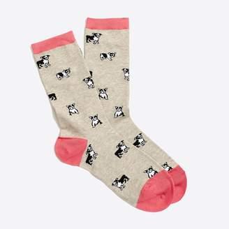 J.Crew Factory French bulldog trouser socks
