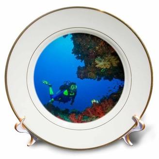 3dRose Diver, Coral-lined Arc, Beqa Island, Fiji - OC01 SWS0111 - Stuart Westmorland, Porcelain Plate, 8-inch