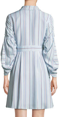 Taylor Striped Fit & Flare Shirtdress