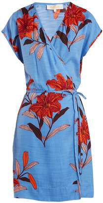 Diane von Furstenberg Floral-print V-neck silk-blend wrap dress