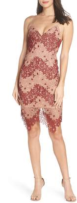 Bardot Two-Tone Lace Dress