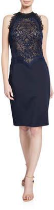 Tadashi Shoji Lace & Neoprene Halter Dress