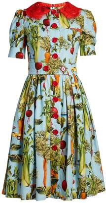 Dolce & Gabbana Carrot and car-print round-neck dress