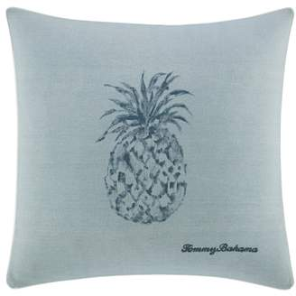 Raw Coast Pineapple Pillow