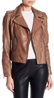 LAMARQUE Donna Genuine Lambskin Leather Biker Jacket