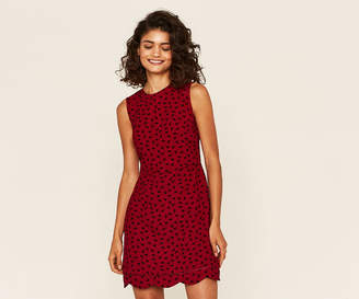 Oasis Ditsy Scallop Shift Dress