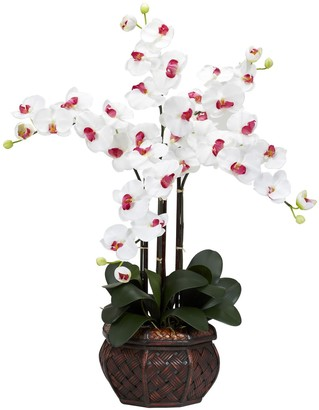 Nearly Natural nearly natural Silk Phalaenopsis Floral Arrangement