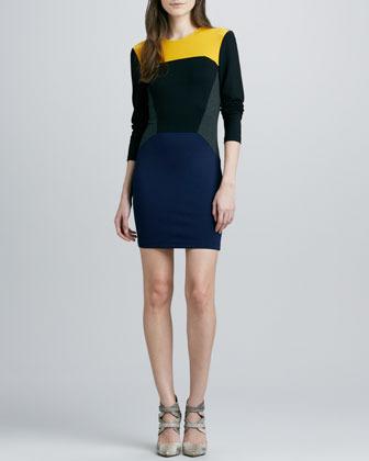 Torn By Ronny Kobo Ivy Colorblock Ponte Dress