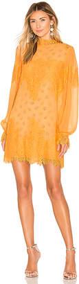 HAH Queen 4 A Day Dress