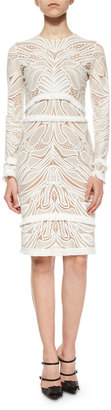 Alexis Chester Lace Long-Sleeve Sheath Dress, White $583 thestylecure.com