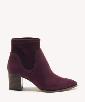 Sole Society Dawnina Stretch Bootie
