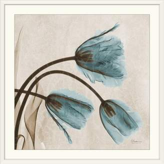Great Big Canvas 'Tulip X-Ray by Albert Koetsier Photographic Print